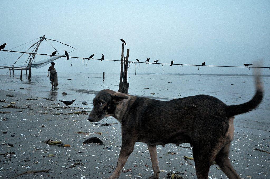 10-ChineseNets-20090301-084-cochin.jpg